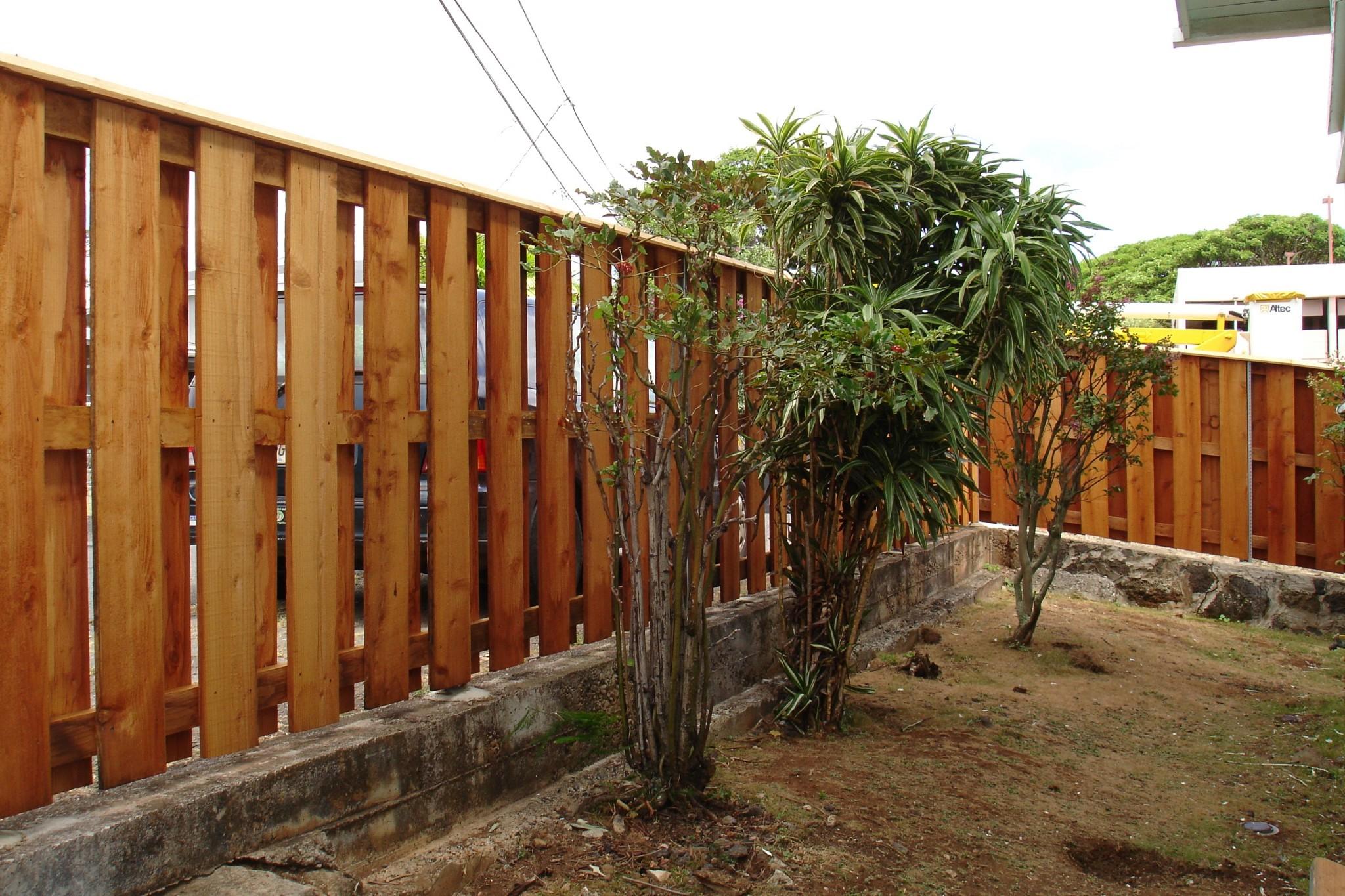 Backyard Wood Fence