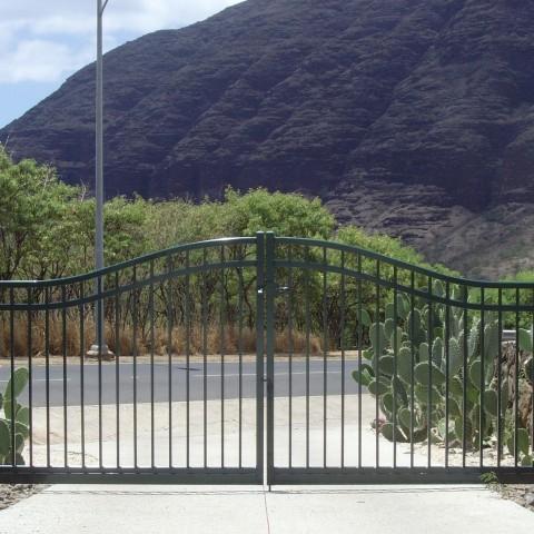 Fancy Ornamental Driveway Gates