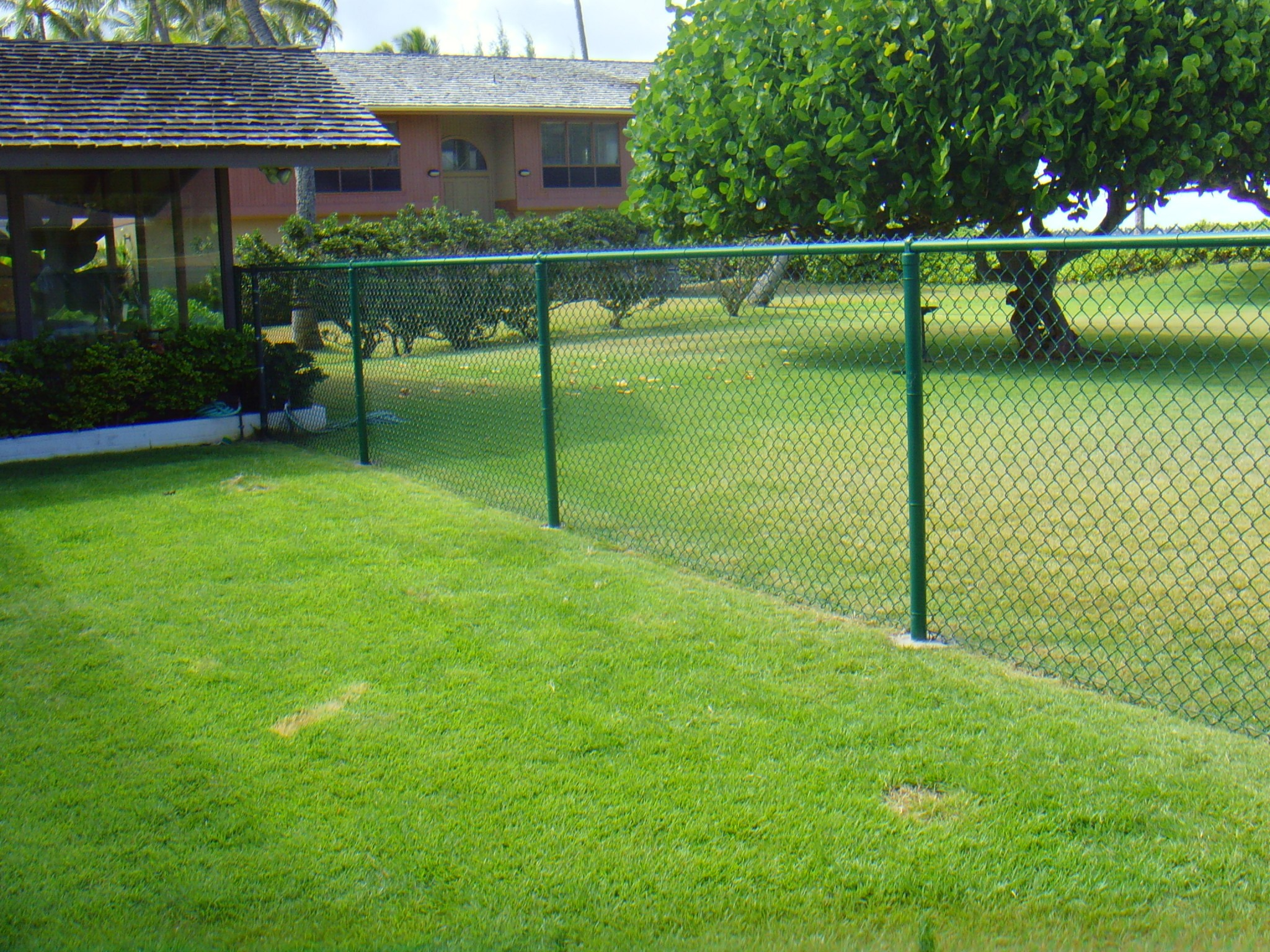 Green-Chain-Link-Fence-PVC